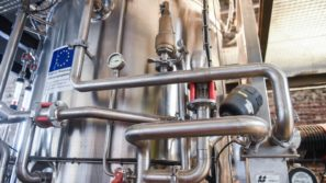 Creating innovative value chains from non-food biomass feedstock